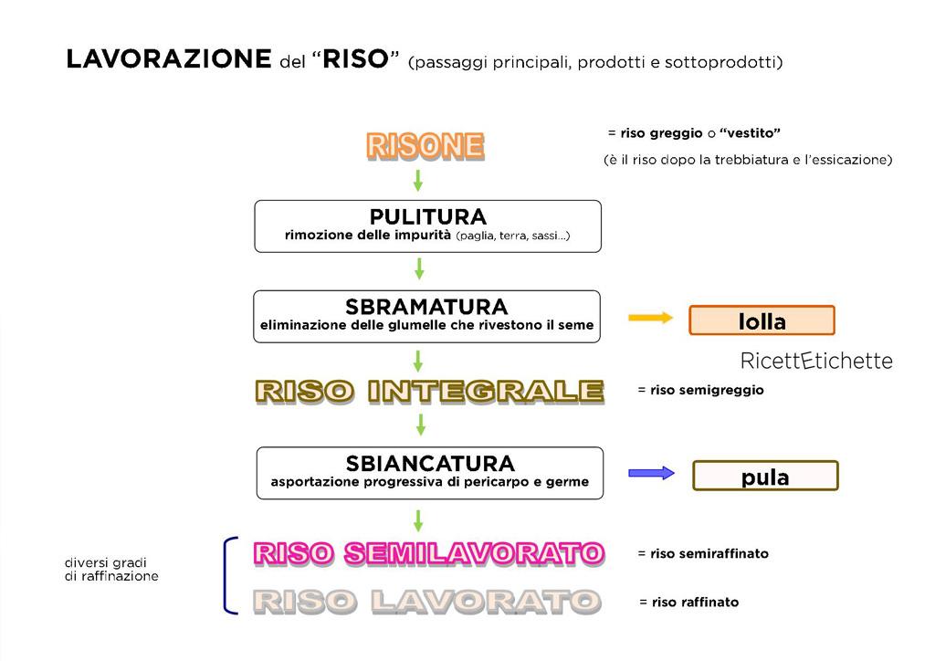 infografica lavorazione riso